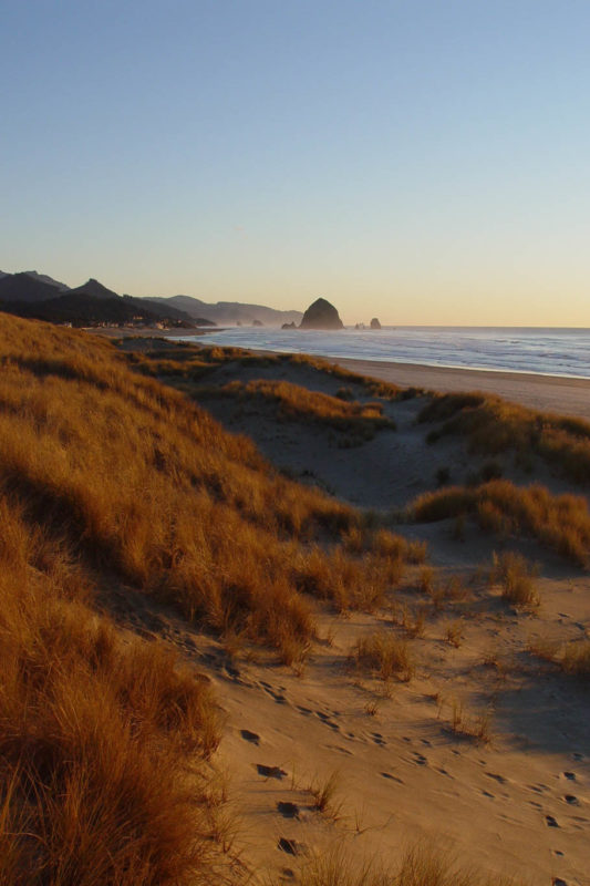 Cannon beach at sunset in the sand dunes