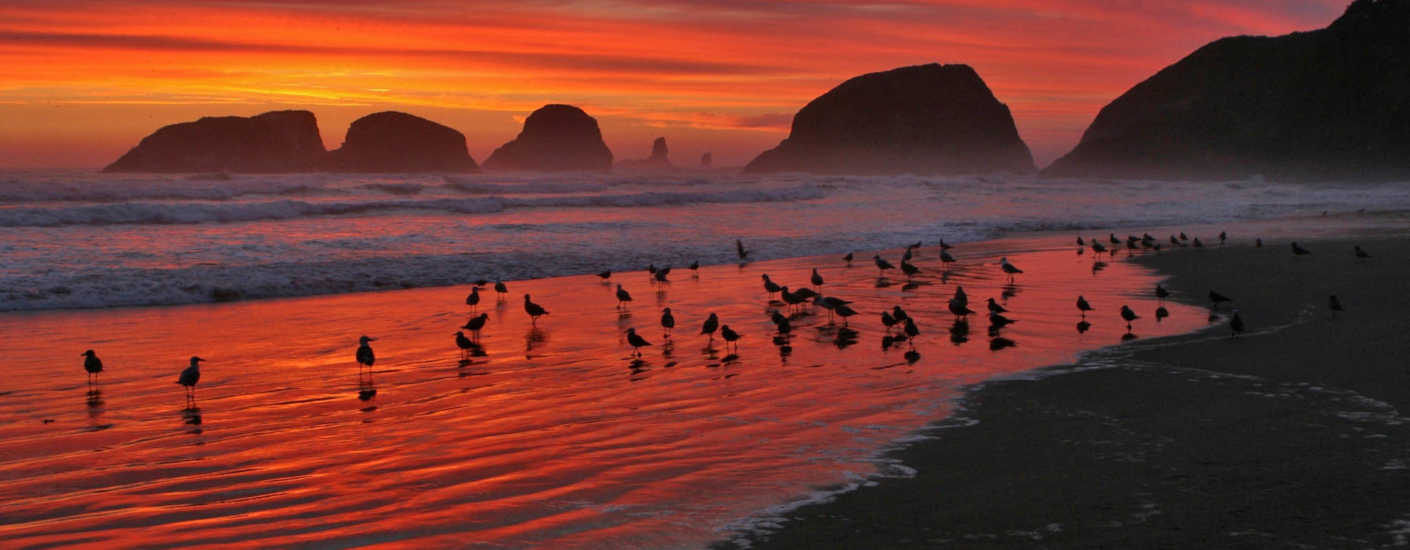 Enjoy the beauty of Cannon Beach