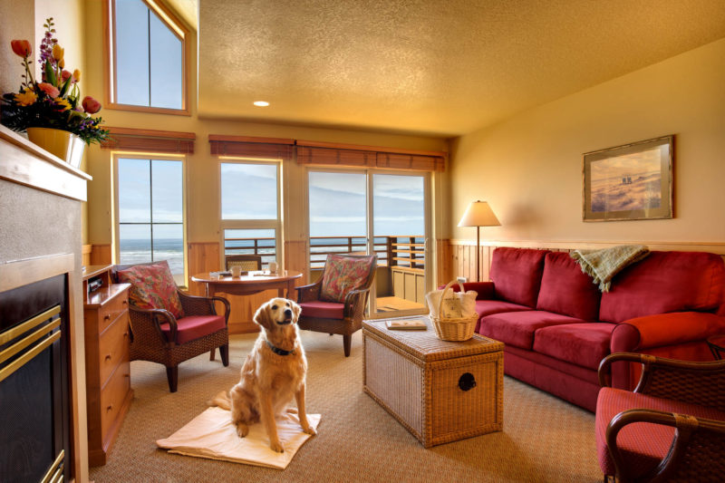 Pet Friendly The Ocean Lodge